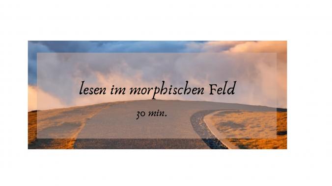 lesen im morph Feld 30 min